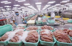 2020年越南查鱼出口额预计达15亿美元
