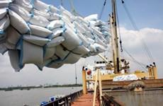 EVFTA:为越南增加对欧盟大米出口提供良机