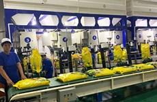 为越南企业向欧盟出口大米提供支持