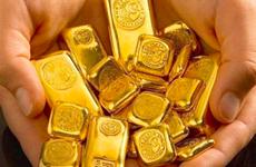 17日上午越南国内黄金价格每两下调5万越盾