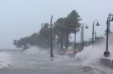 从现在至年底越南或将再受1到2场台风影响