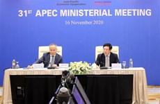 政府副总理兼外交部长范平明出席亚太经合组织第31届部长级会议