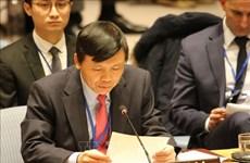 越南与联合国安理会:越南支持有关增加安理会理事国数量的改革方案