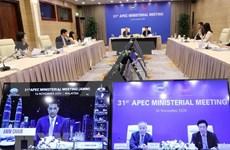 亚太经合组织工商咨询理事会呼吁建造一个充满活力的经济共同体