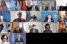 越南与联合国安理会:越南希望以色列与巴勒斯坦尽早重返谈判桌