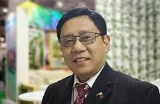 ASEAN 2020:菲律宾驻东盟大使高度评价越南的引领作用