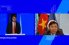 越南与联合国安理会:越南支持阿富汗人主导自己的和平进程