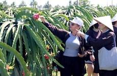 平顺省大力开发与可持续农业相结合的旅游产品