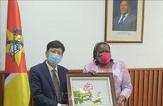 莫桑比克赞扬越南在东盟和联合国安理会事务中发挥的积极作用