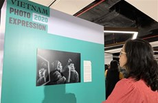 2020年越南摄影大赛结果揭晓