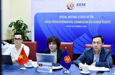 东盟政府间人权委员会召开特别会议