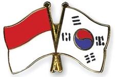 韩国和印尼促进防务工业合作