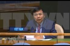 越南呼吁取消单方面强制性措施