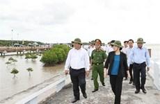 越南国会主席阮氏金银视察金瓯省