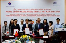 越南与英国在抗生素耐药性领域展开合作