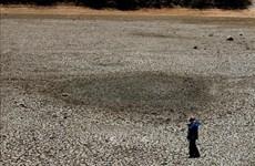 ASEAN 2020:在东南亚地区建立抗旱能力