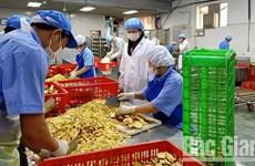 北江省为农业合作社排解困难