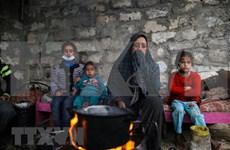 """阮富仲致电祝贺""""声援巴勒斯坦人民国际日"""""""
