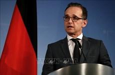 德国外长海科·马斯:越南对欧盟确定与亚洲合作方向起着举足轻重的作用
