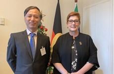 澳外长佩恩:越澳在多个领域上成为彼此的重要合作伙伴