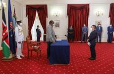 巩固越南与肯尼亚关系