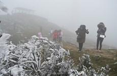 越南北部山区和中部以北地区出现严寒天气 可能出现寒霜冻雾现象