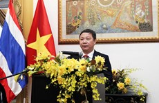 促进越南与泰国在各领域的合作关系