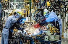 """越南经济成为亚洲的""""璀璨之星"""""""