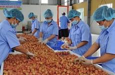 越南力争实现今年农林水产品出口额达410亿美元以上的目标