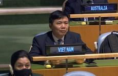 联合国大会通过由越南提出的第一项决议