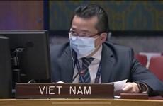 越南对刚果的暴力和动荡局势表示担忧