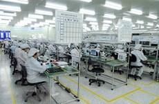 FDI企业加大对辅助工业的投资力度