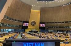 《联合国海洋法公约》第30次缔约国会议:越南强调所有争端问题必须通过和平方式解决