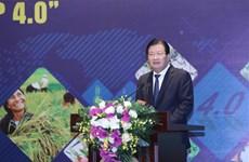 越南力争到2025年底新成立1万个集体经济组织