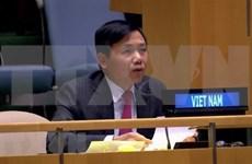越南与联合国安理会:越南主持有关国际法庭工作组会议