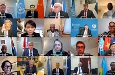 越南代表出席联合国安理会关于国际法院未决案件解决机制的定期会议
