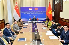 越南与新加坡举行第13次政治磋商