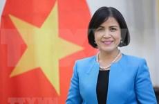 ASEAN 2020:越南促进东盟各国在日内瓦国际组织的参与度