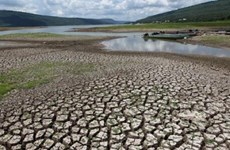 东南亚地区对气候变化的影响进行考察