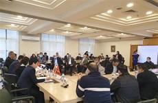 激发潜力 促进越埃经贸合作