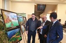 加强对埃及友人的越南文化推广力度