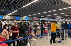 将在德国滞留的近310名越南公民安全接回国