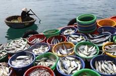 越南坚江省水产品产量超过计划的10%