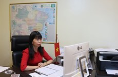 进一步加强越南乃至东盟各国与巴西的经贸合作