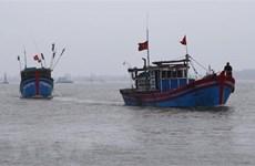 越南驻印尼大使馆为被拘留的渔民开展领事工作