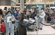 新冠肺炎疫情:将在韩国和日本的近700名越南公民接回国