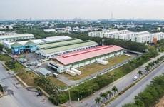 越南隆安省采取六大措施保持其在九龙江三角洲的领先地位
