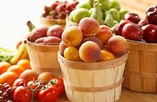水果产业的出口机遇莫大