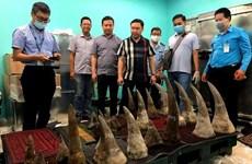 在新山一机场发现超过90公斤重的疑似犀牛角