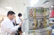 2020年胡志明市侨汇收入约达55 亿美元